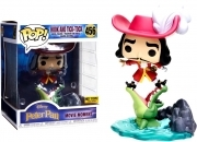 Disney Peter Pan Hook and Tik Tok 456 Disney Treasures BOX Funko POP Figure